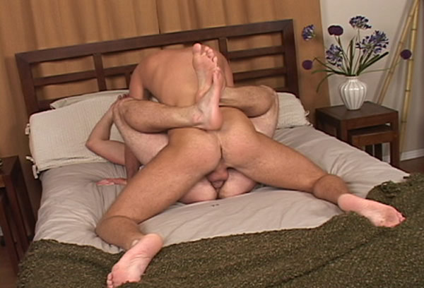 Pleasure in gay anal sex